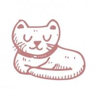 https://melvet.com.au/wp-content/uploads/2019/05/cat-boarding-melville-vet-200x200.jpg